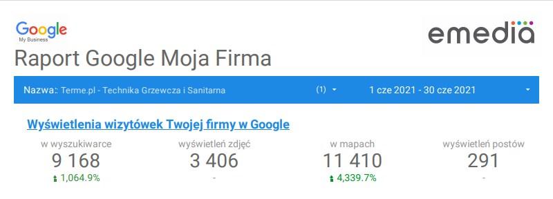 Terme Raport Google Moja Firma Czerwiec2020